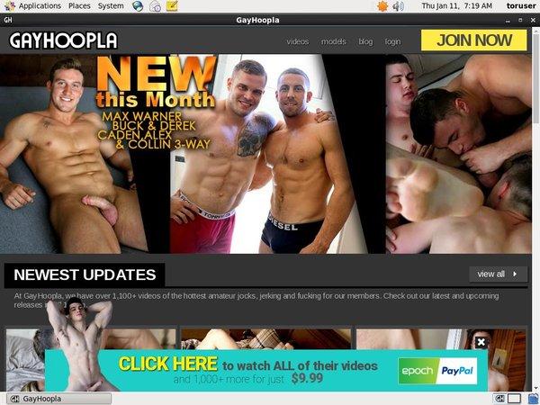 Gay Hoopla 구독하기